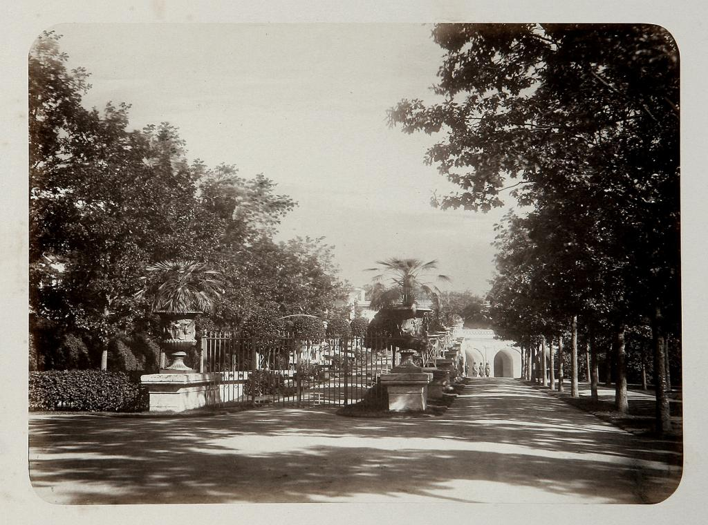 Cameron Gallery Ramp viewerd from Ramp Alley in Catherine Park, 1870s photograph by Scherer, Nabholz & Co.,